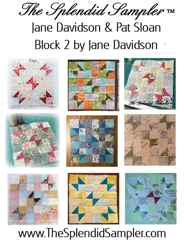 2 Splendid Sampler Jane Davidson Block multi