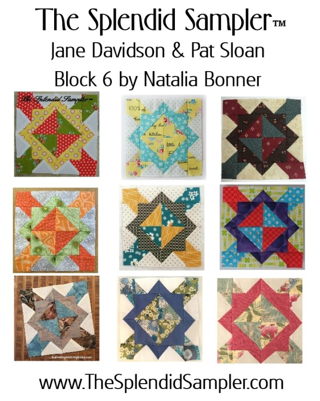 6 Splendid Sampler Natalia Bonner Block multi