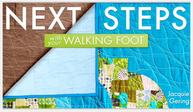 next steps with walking foot