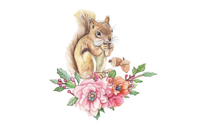 squirll copy